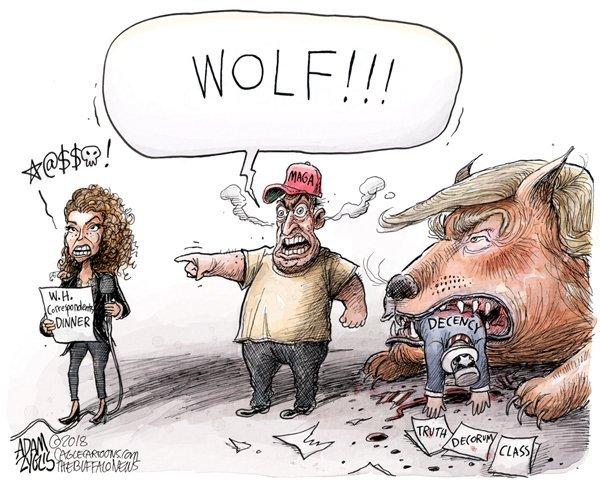 5May_Wolf